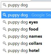 puppy dog search
